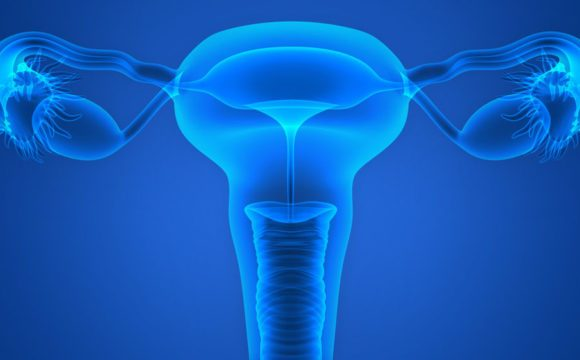Histeroskopia – metoda endoskopowa